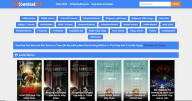 Downloadhub movies downloading website homepage